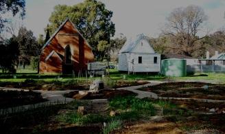 garden august 2010