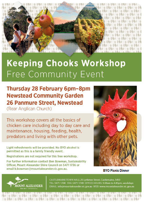 Chook workshop