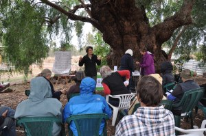 learning how to make biodynamic compost - lessons under the pepper tree