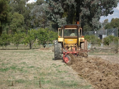 disc ploughing the beds