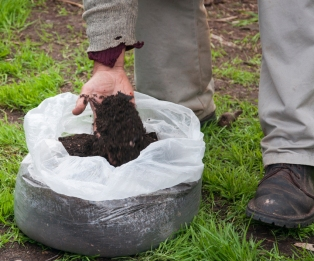 biochar mixed with compost - a good way to 'activate' your biochar
