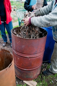 Anthony used eucy twigs, leaves and bark, very dried out