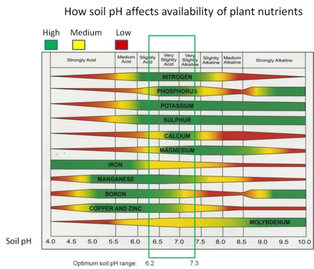 soil_ph_nutrient_availability