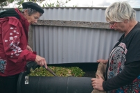 gayle and rose inspect the worm farm