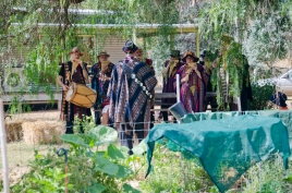 Zamponistas in the garden for morning tea and pan pipes, Newstead Live January 26 2018